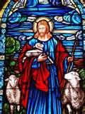 Jesus Shepherd (2)