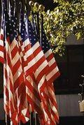 Flag (4)
