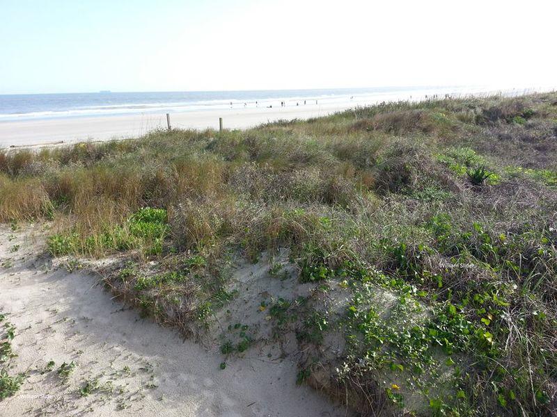 Beach (2)