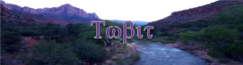Tobit (1)