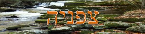 Zephaniah (1)
